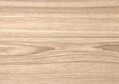 台灣檜木|20526D