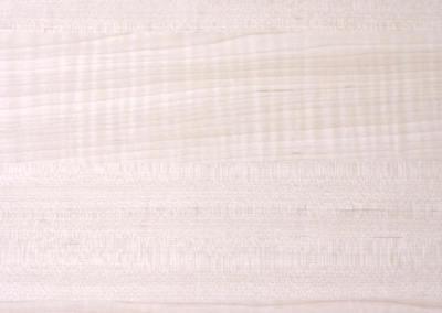 吉安特系列 – 白楓木  |GT30516