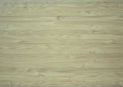 側竹洗綠| 4寸200條