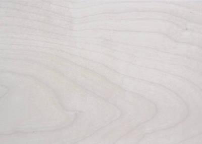 白楓木| 5寸200條